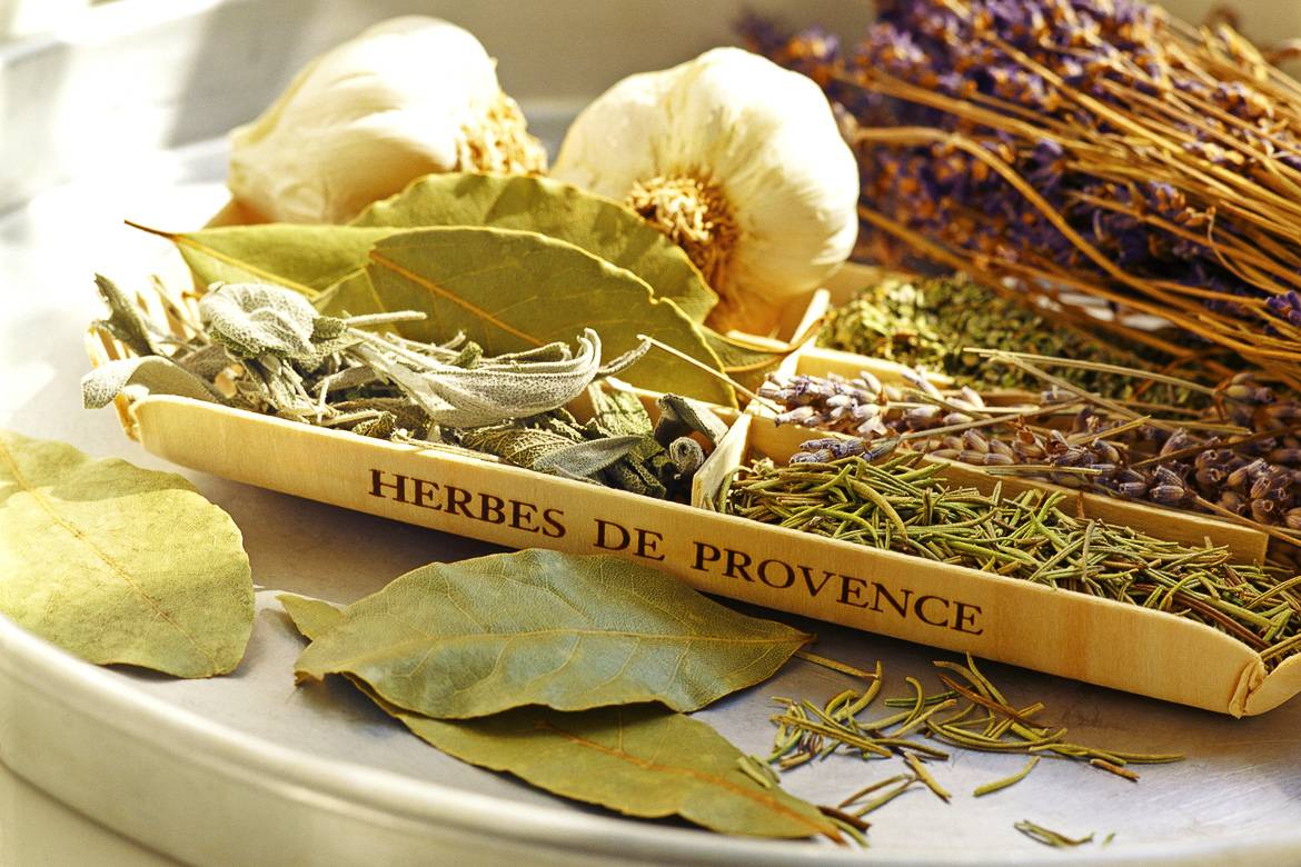 herbs-sage-Lavender-Texas-provence-massage-Marble Falls