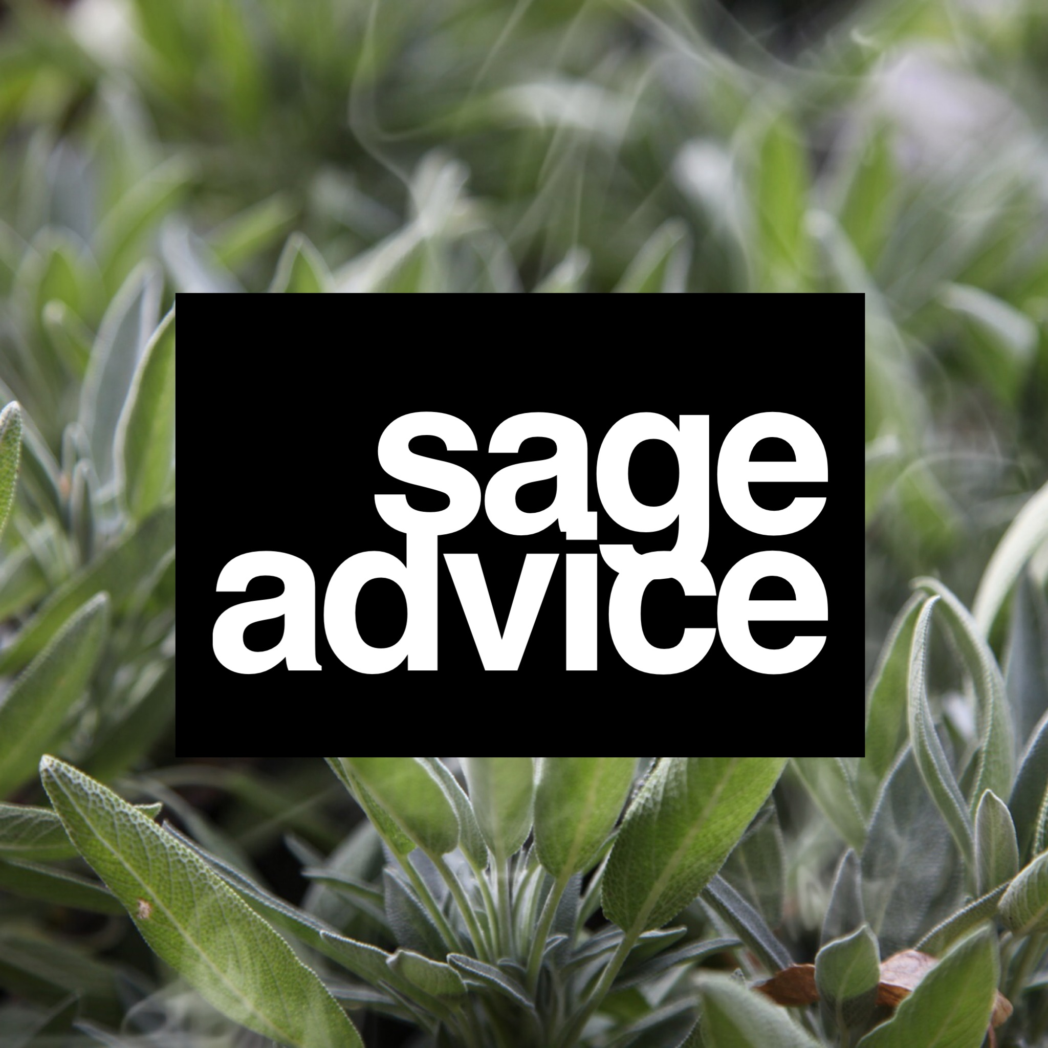 sage-advice-marble-falls-massage-beauty-spa-wisdom-herb